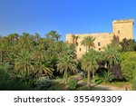 Tall Palm Trees Around Old...