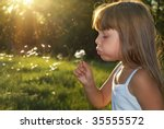 my summer | Shutterstock . vector #35555572