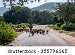 A Shepherd In Horsley Hills ...