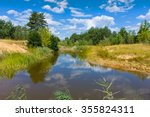 Summer Landscape With Small...