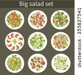 salad. big vector set. various... | Shutterstock .eps vector #355837541