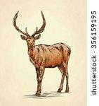 brush painting ink draw deer... | Shutterstock . vector #356159195