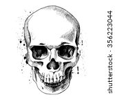The Image Of The Skull. Vector...