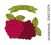 tropical fruit design  vector... | Shutterstock .eps vector #356571074