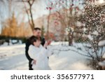 wedding couple at the winter... | Shutterstock . vector #356577971