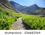 a grass path to the mountains | Shutterstock . vector #356682569