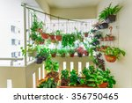 home grown flowers and herbs in ... | Shutterstock . vector #356750465