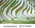 Longji Terrace Fields In Guilin