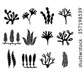 seaweed icons set   nature ... | Shutterstock .eps vector #357198539
