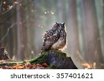 Stock photo eurasian eagle owl bubo bubo sitting on the stump close up wildlife photo 357401621