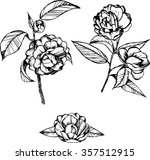 coloring books for children and ... | Shutterstock .eps vector #357512915