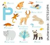 P Letter Animals Set. English...