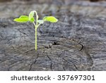 the concept of business growth... | Shutterstock . vector #357697301