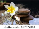 touching nature with relaxing... | Shutterstock . vector #357877004