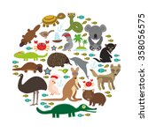 animals australia. echidna... | Shutterstock . vector #358056575