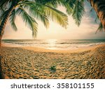 tropical beach with coconut... | Shutterstock . vector #358101155
