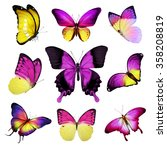 Nine Pink Yellow Butterflies O...