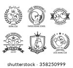 boxing labels and boxing badges | Shutterstock .eps vector #358250999