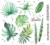 illustration with tropical... | Shutterstock . vector #358309085
