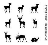 deer collection   vector...   Shutterstock .eps vector #358316219
