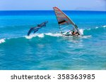 windsurfing and dolphin | Shutterstock . vector #358363985