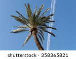 palm tree with airplane trails  | Shutterstock . vector #358365821