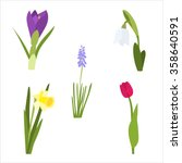 spring flower set with tulip ... | Shutterstock .eps vector #358640591