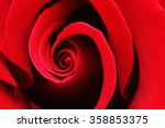 Stock photo macro shot of a red rose 358853375