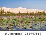 Lake Of Lotuses At White Sand...