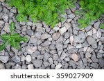 close up grey granite gravel... | Shutterstock . vector #359027909