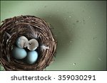 bird nest with hatched blue... | Shutterstock . vector #359030291