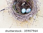 Real nest and blue spotted chipping sparrow eggs on tan craquelure background. - stock photo
