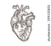 vintage engraved human heart.... | Shutterstock . vector #359132831