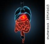 disease illustration of human...   Shutterstock . vector #359141615