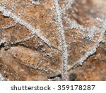 iny on leaves | Shutterstock . vector #359178287