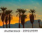 Palm Trees Against Mountain At...