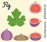 Vector Fig Icon  Flat Design