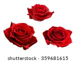 set of three red rose flowers... | Shutterstock . vector #359681615