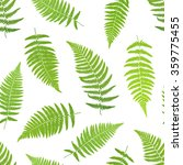 fern frond silhouettes seamless ... | Shutterstock .eps vector #359775455