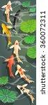 carps koi fish under water....   Shutterstock .eps vector #360072311