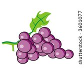 purple grapes | Shutterstock .eps vector #3601077
