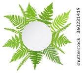 jungle poster. fern frond...   Shutterstock .eps vector #360231419