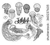 Jellyfish Drawn In Line Art...