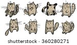 eight kind cats play  one of... | Shutterstock .eps vector #360280271