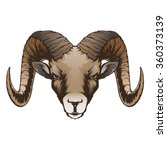 ram head | Shutterstock .eps vector #360373139
