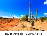 desert, cactus in desert, tatacoa desert, columbia, latin america, clouds and sand, red sand in desert, cactus