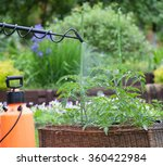 protecting tomato plants from... | Shutterstock . vector #360422984