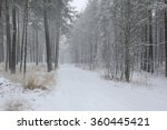 snowy road in winter woods | Shutterstock . vector #360445421