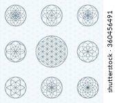 flower of life. sacred geometry ... | Shutterstock .eps vector #360456491