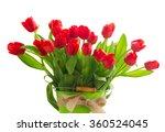 fresh red tulip flowers in... | Shutterstock . vector #360524045